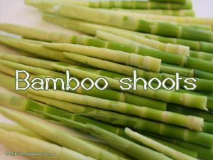 The Bamboo Bazaar - bamboo shoots