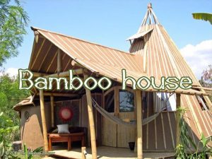 The Bamboo Bazaar - bamboo house